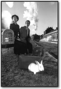 Quand un train vous pose un lapin